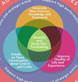 Image displaying Crohn's and Colitis Canada's Strategic Plan